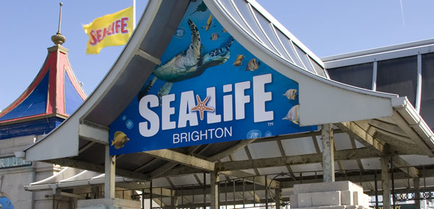 Brighton Sea Life Centre