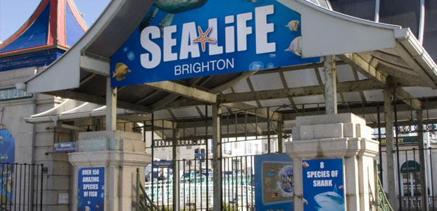 Sea Life Centre, Brighton