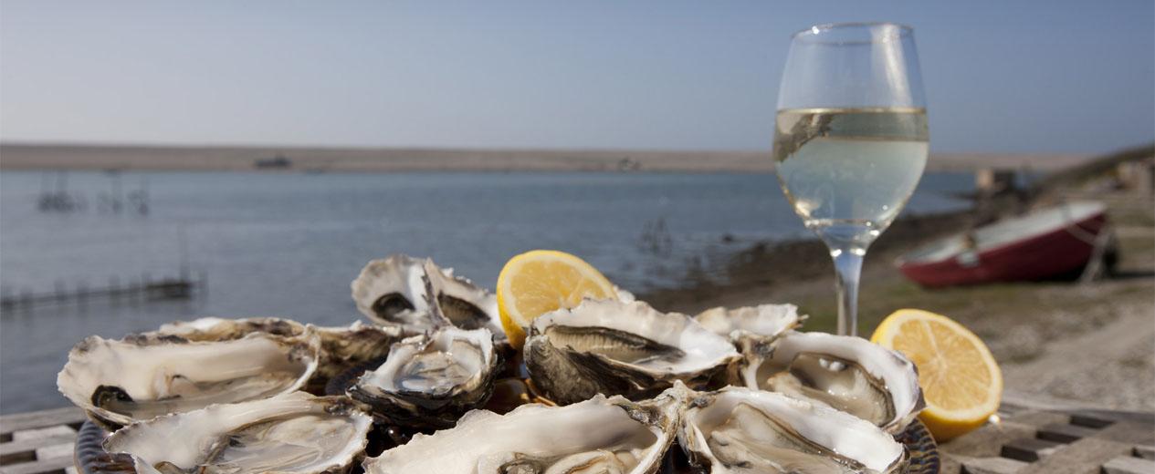 50 Cardigan Bay Seafood Fes