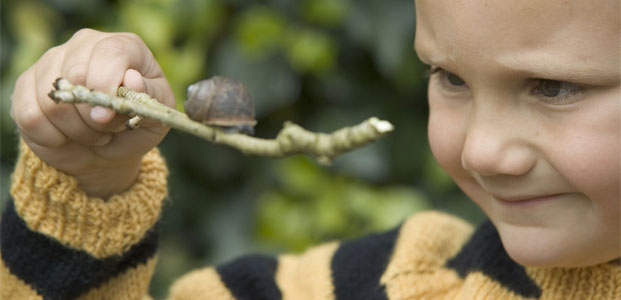 Championnat du monde de course d'escargots – Événement grand-public