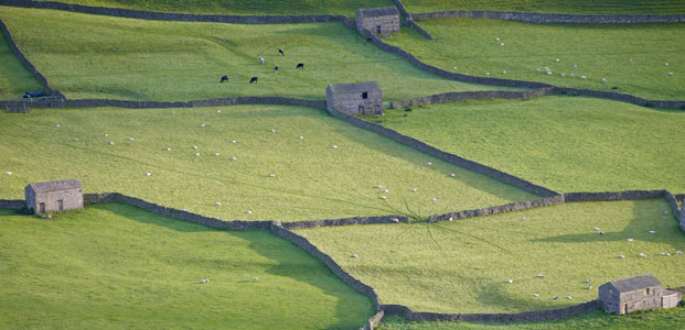 Gunnerside, Yorkshire Dales - a view over the dales landscape